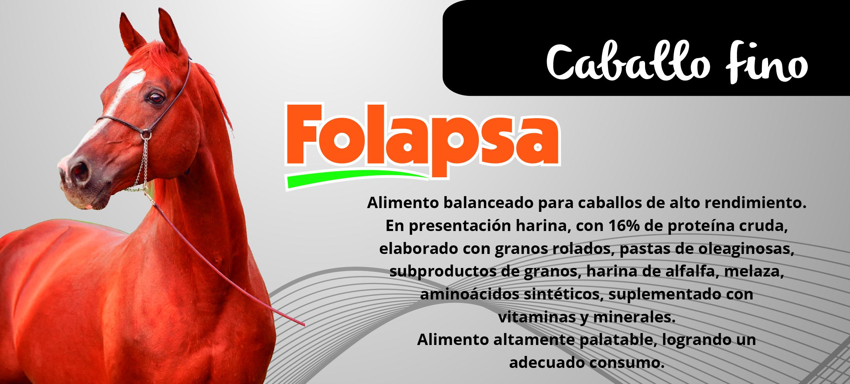 CABALLO FINO-01 (1)
