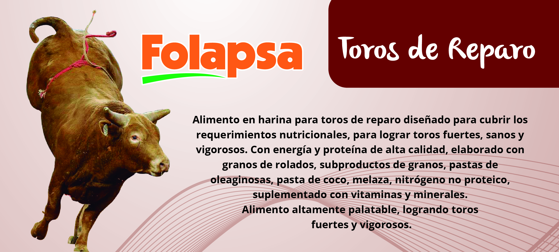 TOROS-01